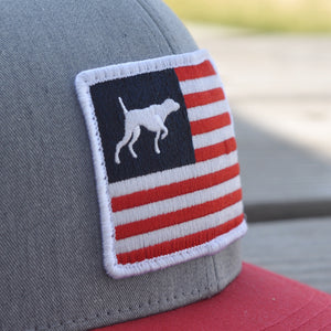Red, White, and Bird Dogs