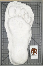 "Load image into Gallery viewer, 1982 Grays Harbor Hereford Bigfoot print cast ""E"""