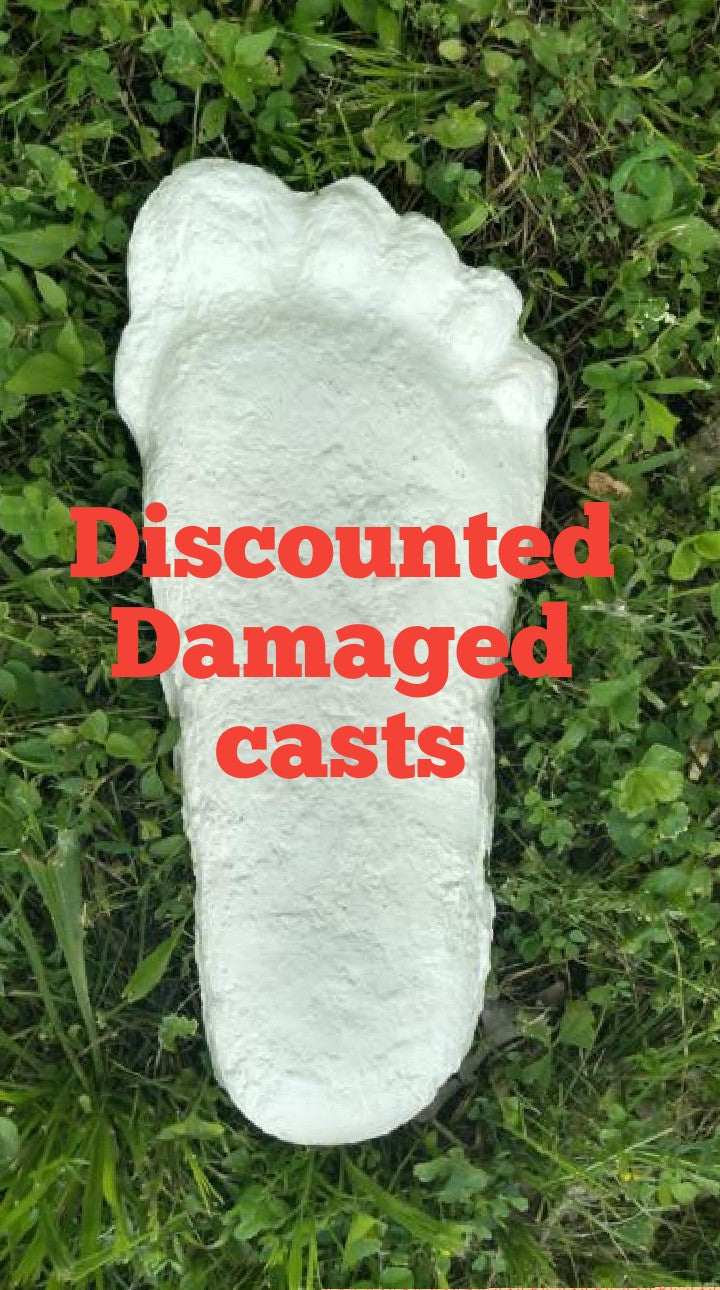 1 Discounted Patty Patterson Bigfoot track damaged footprint cast