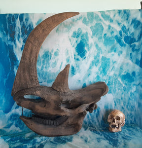 Woolly Rhino skull cast replica 3