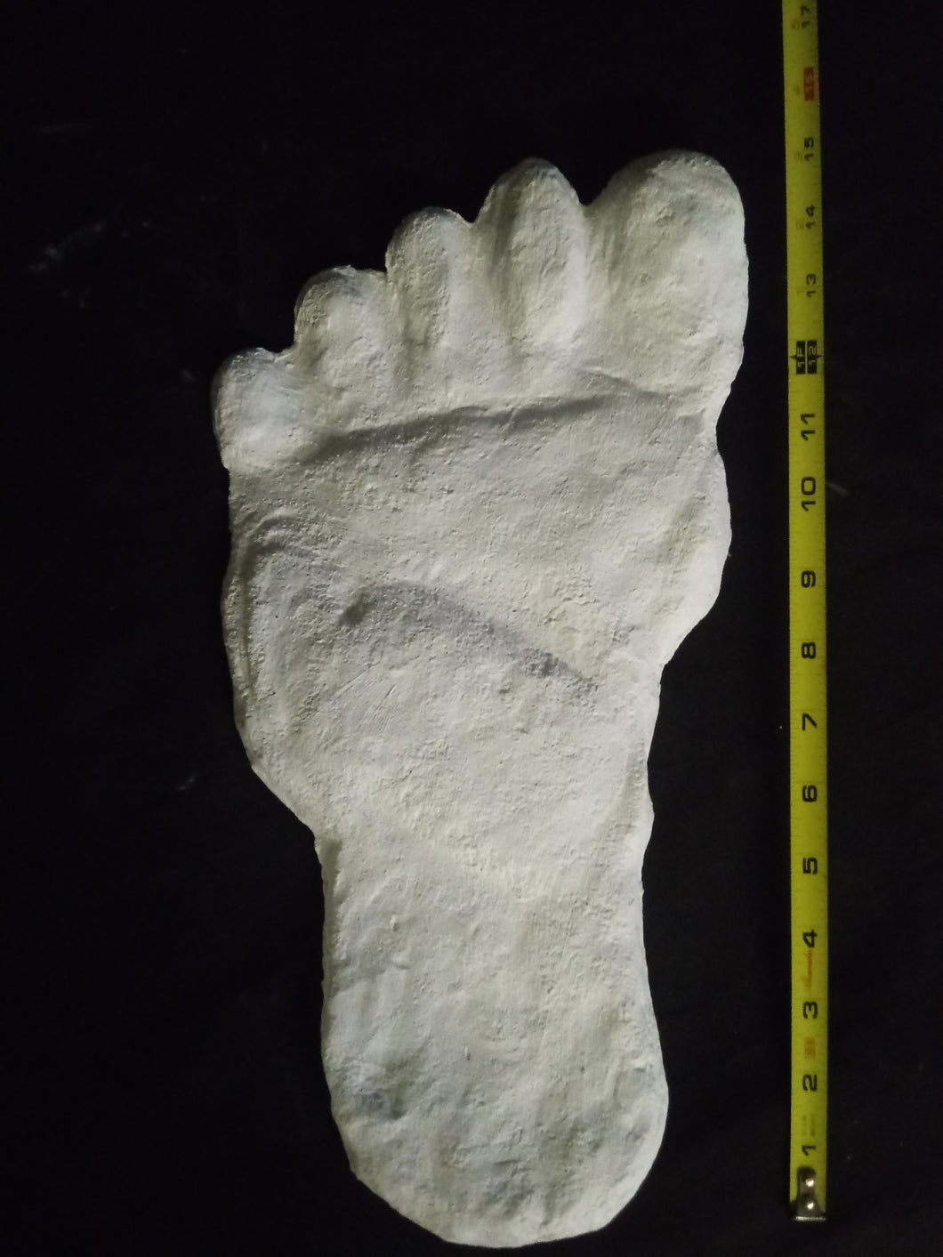 19xx Almasty Almas Footprint track cast from Russia Cryptozoology HUGE ALMASTY ALMAS Footprint BIGFOOT