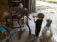 Load image into Gallery viewer, Lufengosaurus skeleton cast replica dinosaur for sale or rent