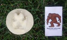 Load image into Gallery viewer, Red fox footprint cast replica