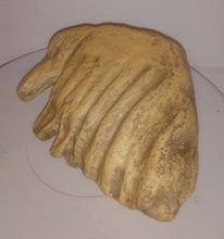 Load image into Gallery viewer, Dwarf Mammoth tooth cast replica