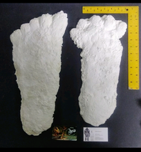 Load image into Gallery viewer, 1963 Hyampom A cast Bigfoot (Sasquatch) cast