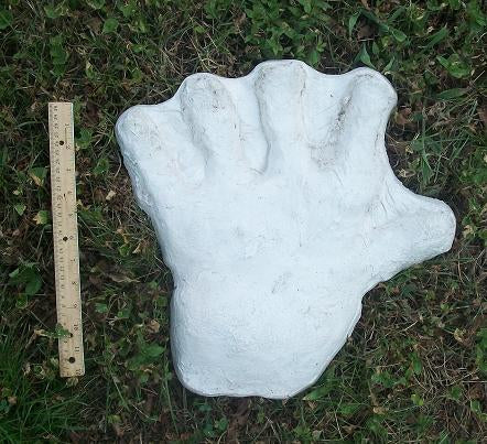 1970s  Bigfoot hand cast #2: XL hand (1970)