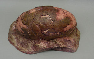 Sauropod Egg V Egg Cast Replica Dinosaur Reproductions