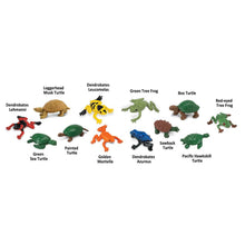 Load image into Gallery viewer, Frogs & Turtles Safari Ltd toys. Item: SKU 694804