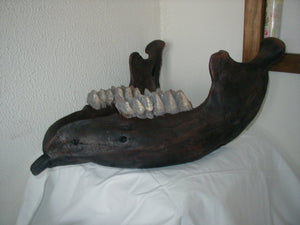 Mastodon jaw (mandible) cast replica Pleistocene. Ice Age