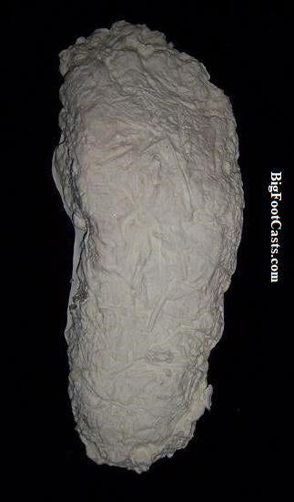 1996 Mill Creek Bigfoot print cast