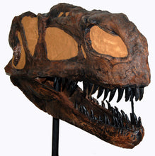 Load image into Gallery viewer, Monolophosaurus dinosaur skull cast replica #2