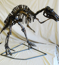 Load image into Gallery viewer, Juvenile Maiasaurus  Skeleton cast replica dinosaur