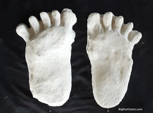 "1984 Paul Freeman's ""Wrinkle Foot"" cast  ""A"""