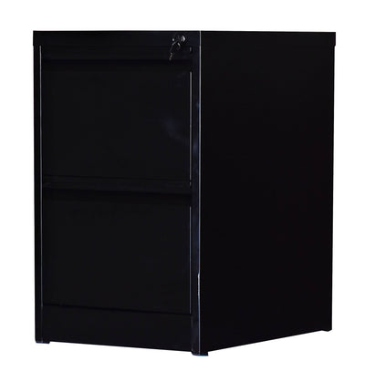2-Drawer Shelf Office Gym Filing Storage Locker Cabinet | 360HomeWare