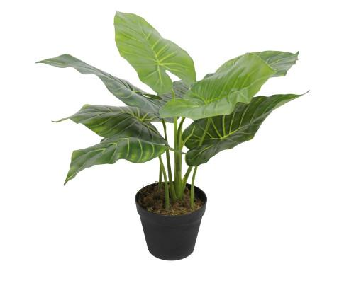 Artificial Potted Taro Plant / Elephant Ear 55cm | 360HomeWare