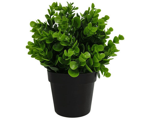 Small Potted Artificial Peperomia Plant UV Resistant 20cm | 360HomeWare