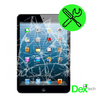 iPad Mini High Quality Front Glass Replacement PLUS Installation!