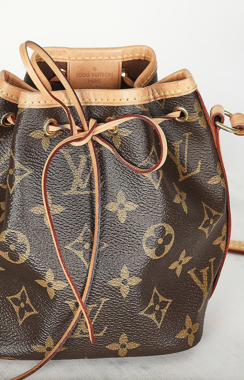 Tasche Nano Noé in Monogram Canvas
