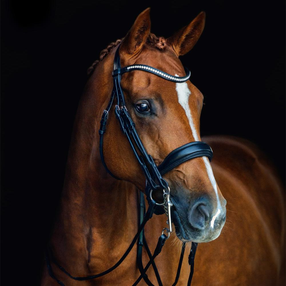 Schockemohle Venice Anatomical Rolled Double Bridle