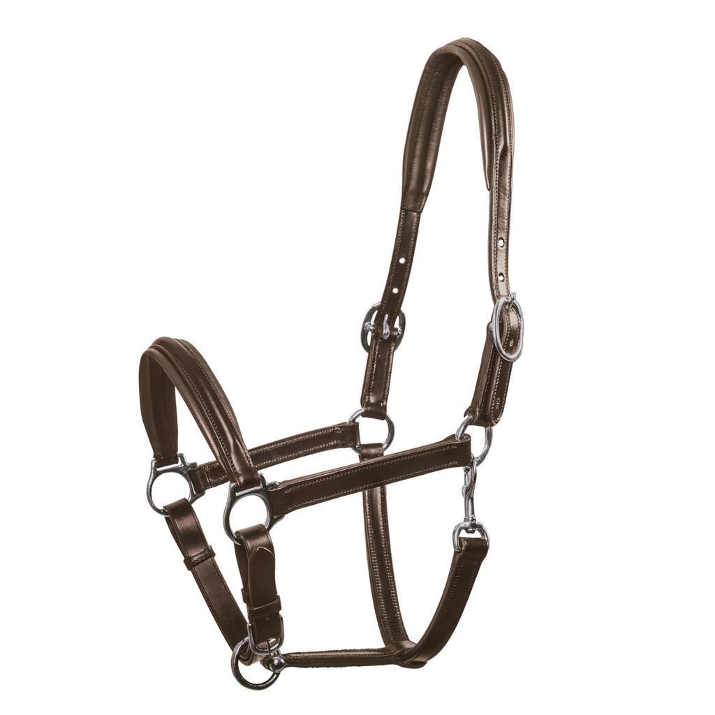 Schockemohle Ulm Round Raised Leather Headcollar