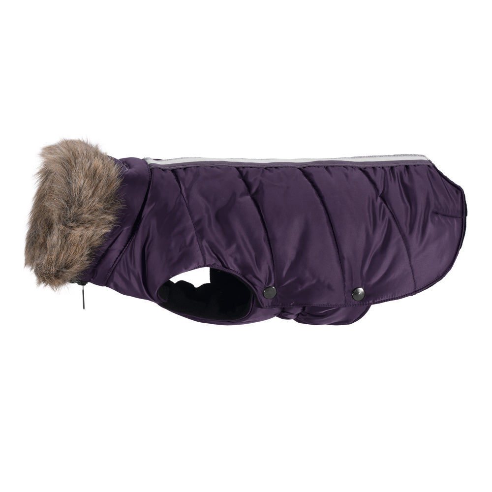 Eskadron AW18 Classic Sports Dog Coat - Plum