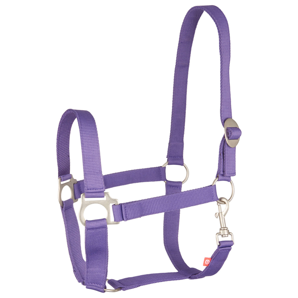 Imperial Riding Halter Nylon Economic Royal Purple