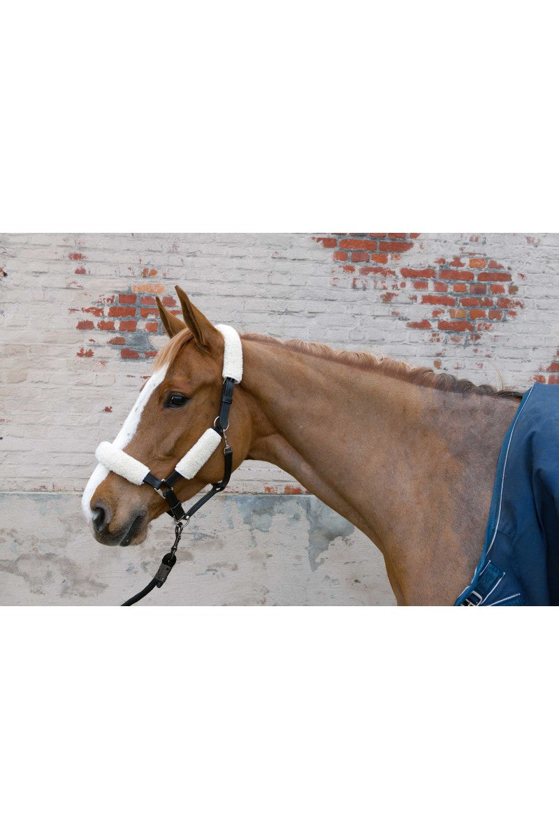 Brogini Fleece Cover for Bridle/Halter