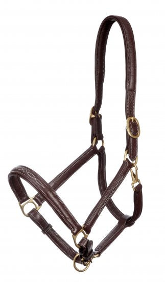 Embroidered Leather Headcollar Brown