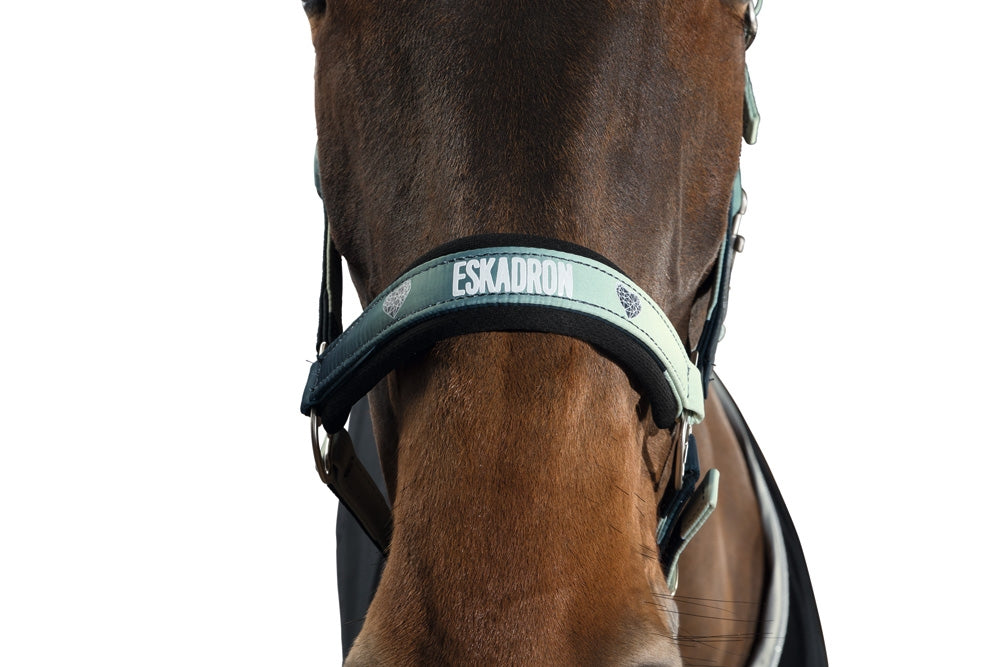 Eskadron SS18 NG Fade Headcollar & Leadrope - Spearmint/Ink Blue
