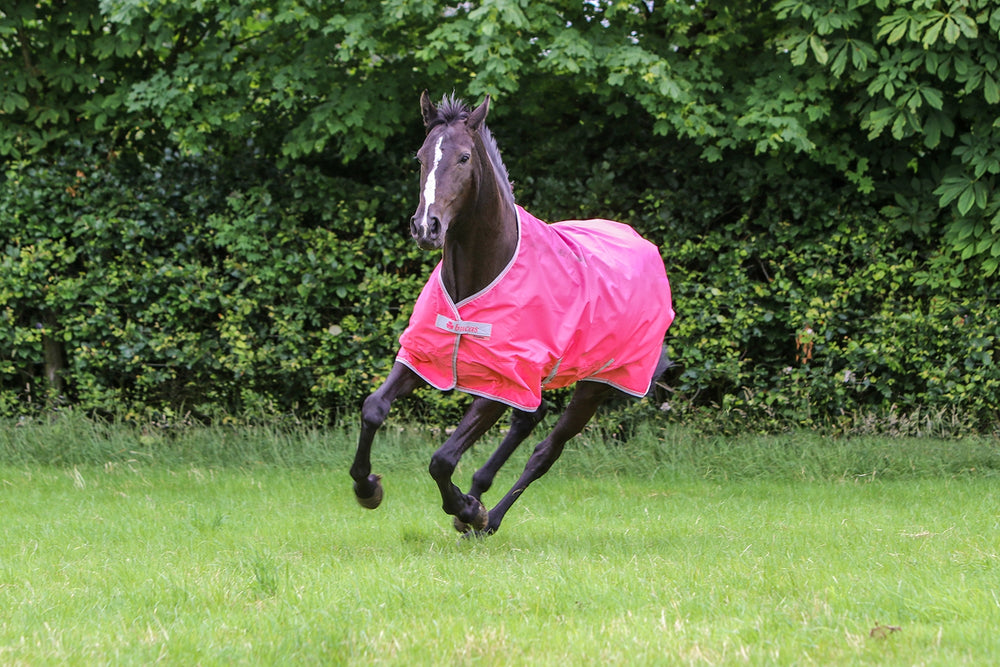Bucas Freedom Lightweight Turnout - Paradise Pink