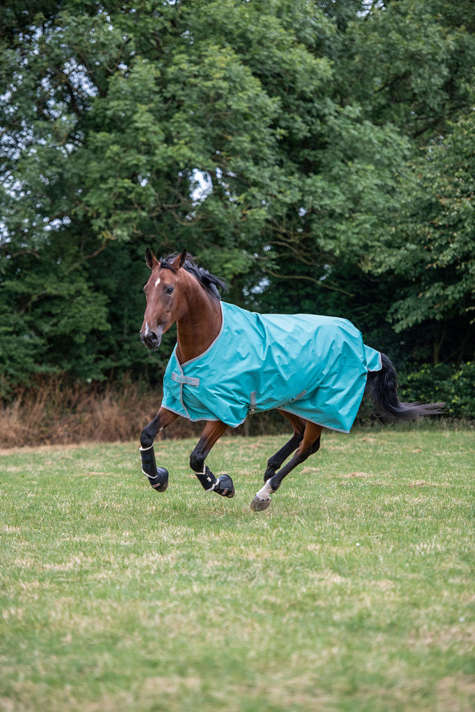 Bucas Freedom Lightweight Turnout - Lagoon