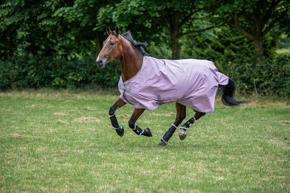 Bucas Freedom Lightweight Turnout - Mauve
