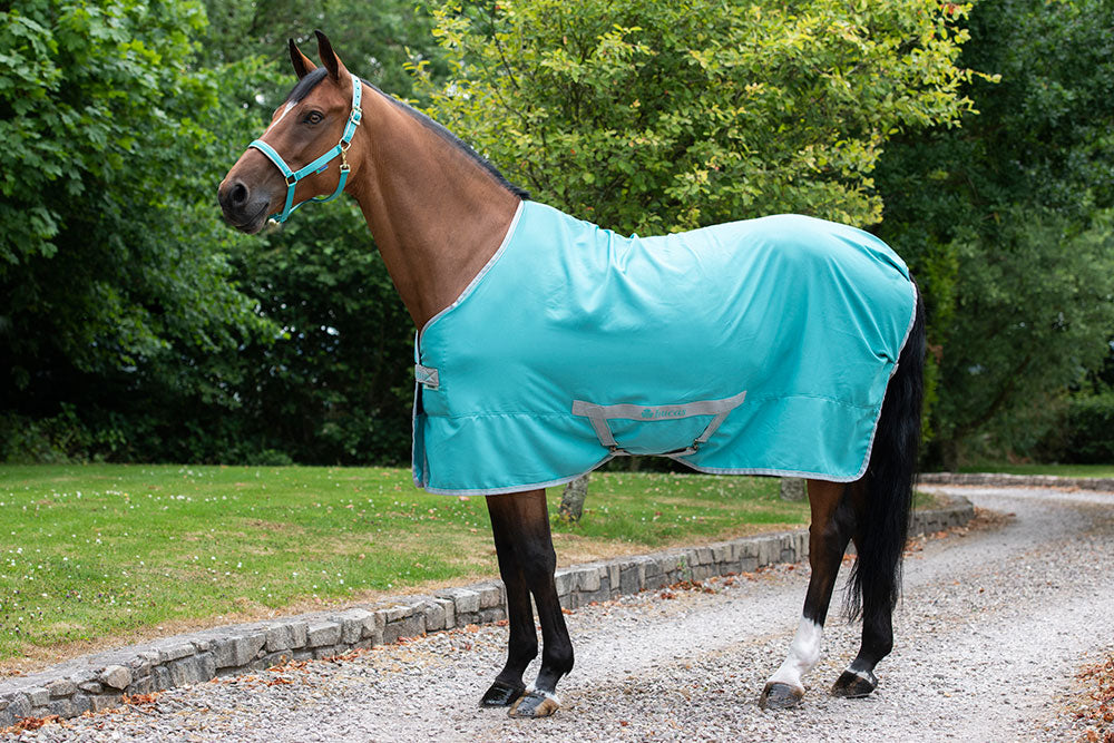 Bucas Freedom Twill Stable Sheet - Lagoon