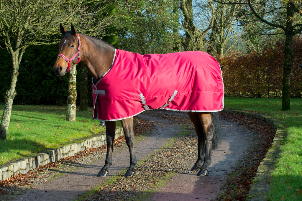 Bucas Freedom 150g Mediumweight Stable Rug - Persian Red