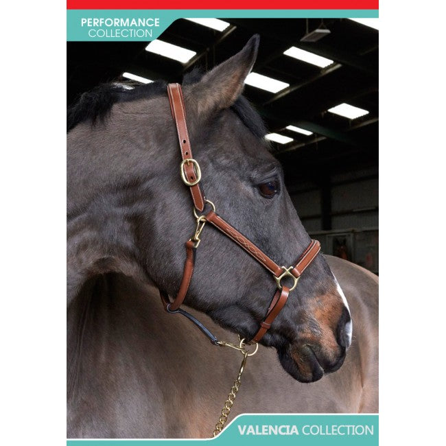 John Whitaker Valencia Fancy Stitched Head Collar Tan