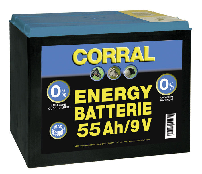Corral Zinc-Carbon 55 Ah Dry Battery - 9V