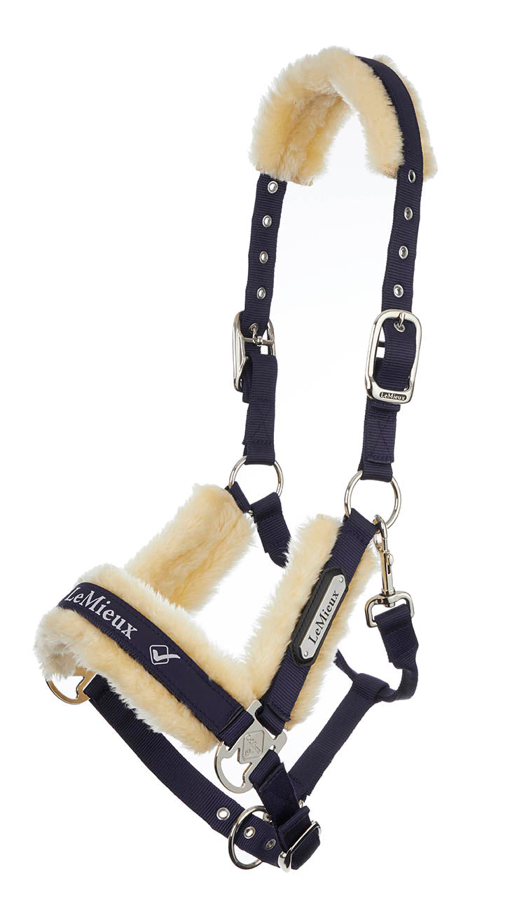 LeMieux Loire Luxury Padded Headcollar & Leadrope - Navy