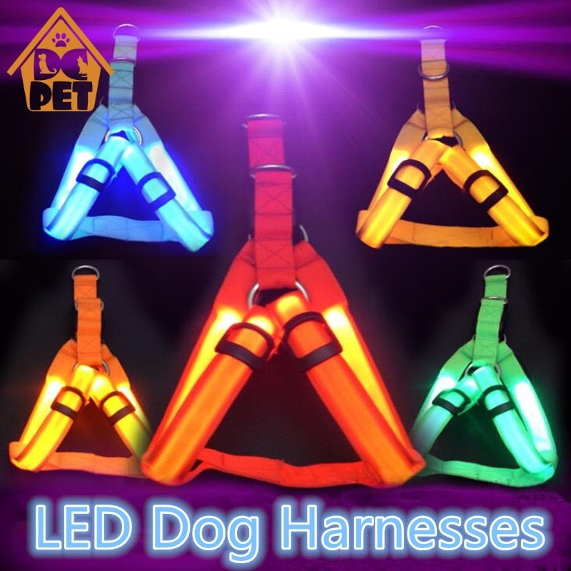 Pet Safety LED Harness