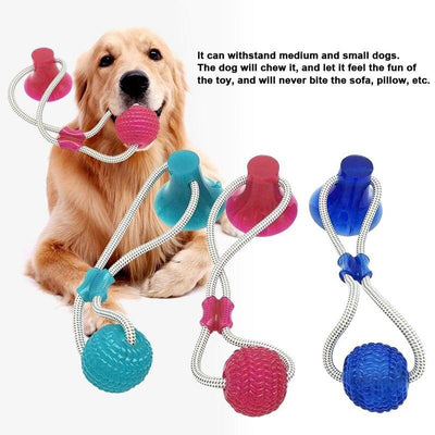 Tug Rope Molar Bite Dog Toy
