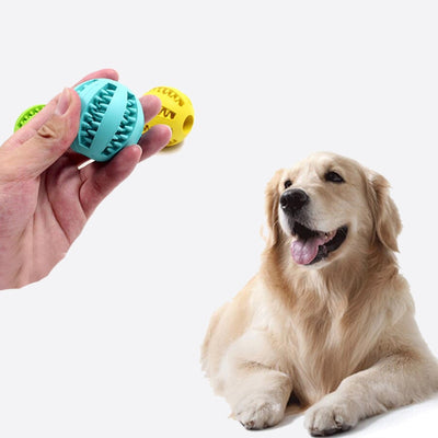 Dog Treat Chewable Toy Ball
