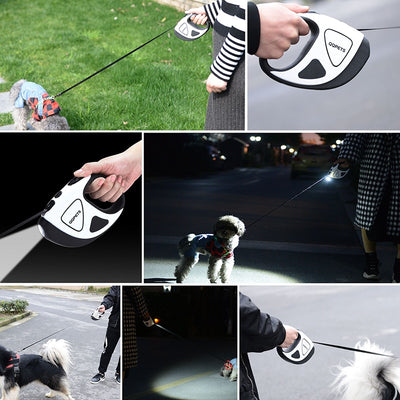Retractable LED Flashlight Dog Leash