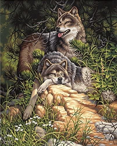 DIM91416 WILD & FREE WOLVES PAINT BY NUMBER