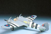 TAM61067 1/48 BRISTOL BEAUFIGHTER TF.MK.X