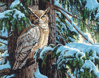 DIM7391772 GREAT HORNED OWL PAINT BY NUMBER