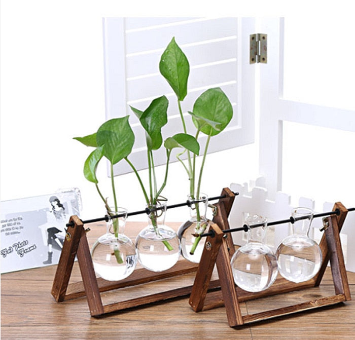 2018 Creative Wooden Stand Glass Terrarium Container Hydroponics