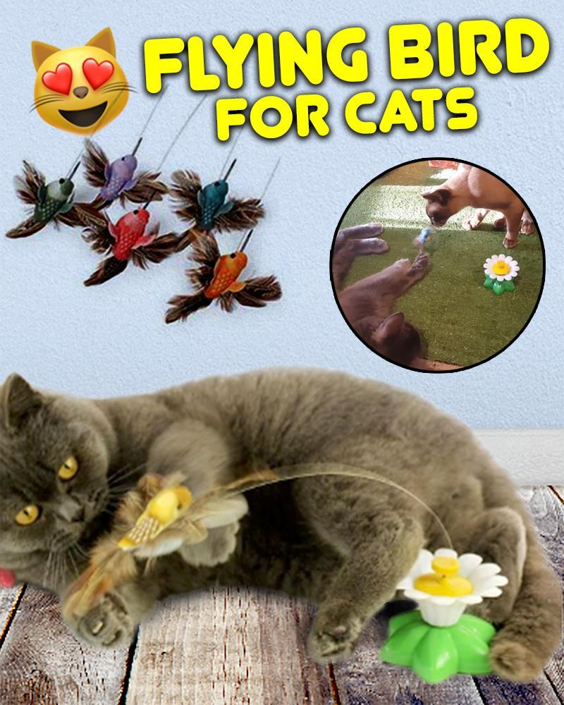 Flying Bird for Cats - LimeTrifle