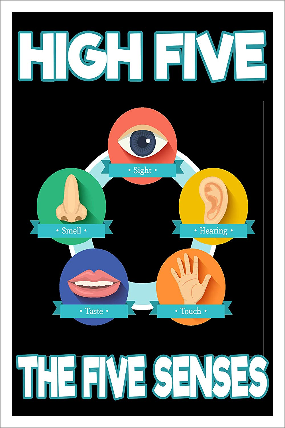 "Spitzy's High Five - The Five Senses - Funny Elementary School Teacher Poster (12"" x 18"" Dimensions Include a White .5"" Border)"