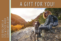 e-Gift Card with white woman in canyon hiking with her brown/white dog