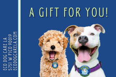e-Gift Card Image of 2 happy dogs