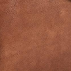 Brown - Swatch